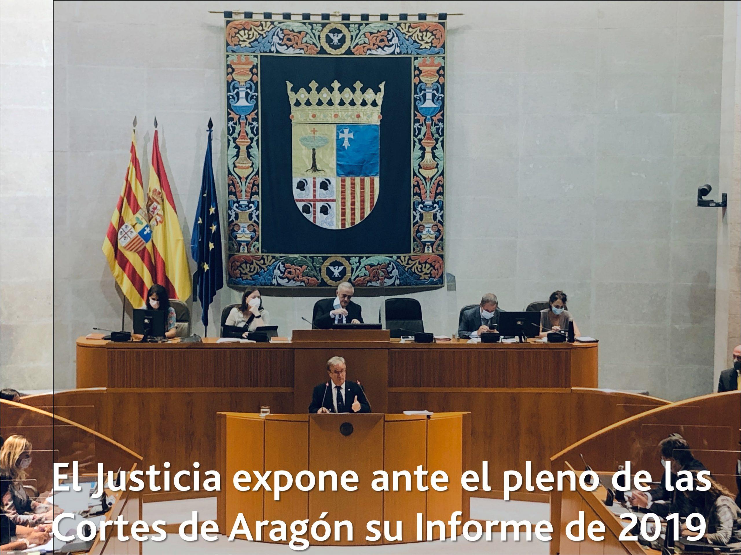 Pleno informe 2019